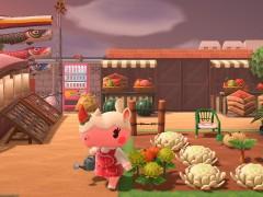 Lil Bakery's Farmers Market