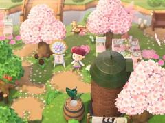 Cherry blossom vibes 🌸